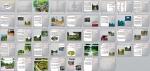 پاورپوینت بررسی اصول و ضوابط طراحی پارکهای شهری  - 43 اسلاید